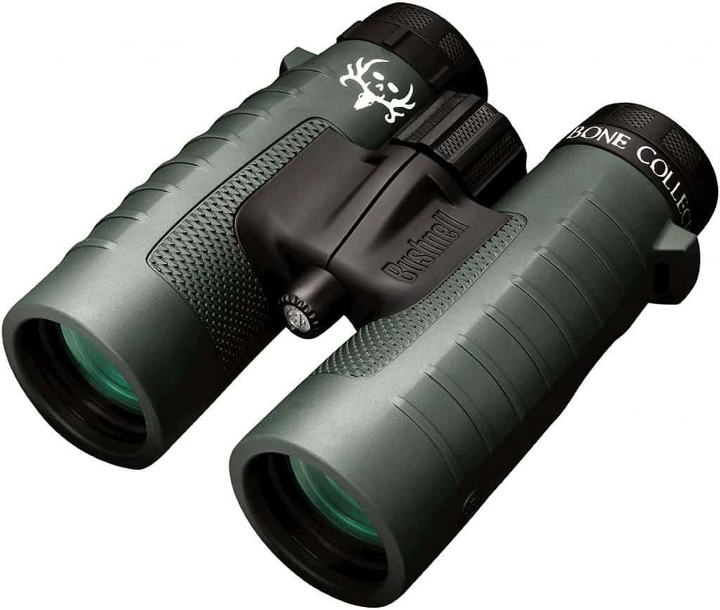 Bushnell Green Roof Trophy 10x42 Binocular